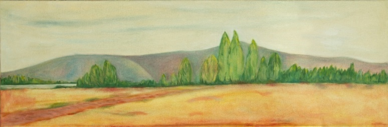 DISTANT HILLS 90cm x 30cm Oils on canvas Selected for Arrowtown Autumn Festival Art Awards, April 2014.